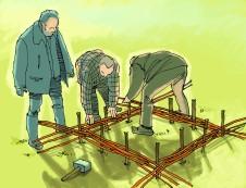 illustration plessi en gaulette pour le livre Semis & plantations de Xavier Mathias et Loïc Tellier