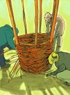 illustration tontine pour le livre Semis & plantations de Xavier Mathias et Loïc Tellier